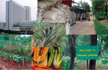 インドネシア ホテル残渣の肥料化